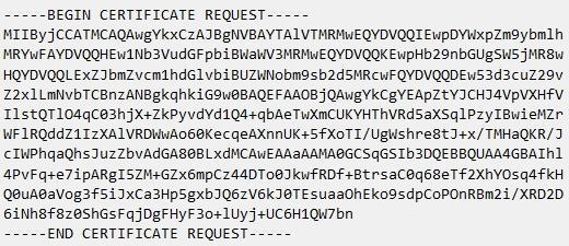 изглед на файл с csr заявка