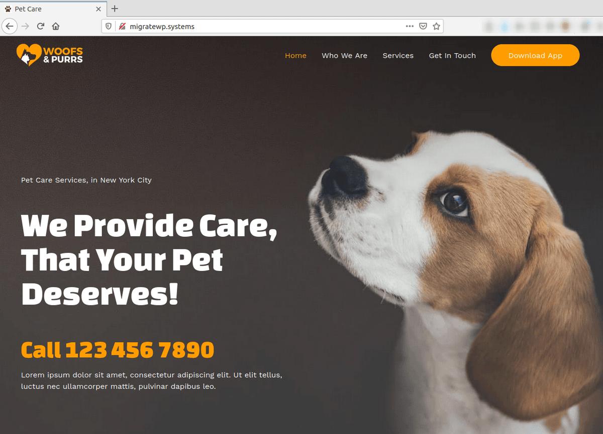 Изглед на WordPress сайтa в браузър