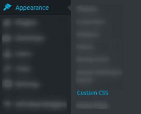 Достъп до SiteOrigin CSS