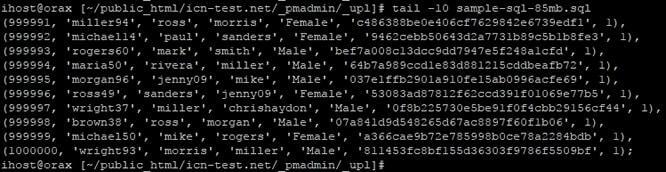 Проверка на архива през SSH