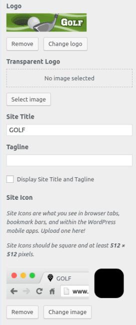 Секция Site Identity