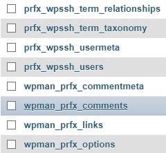 wordpress ssh installation