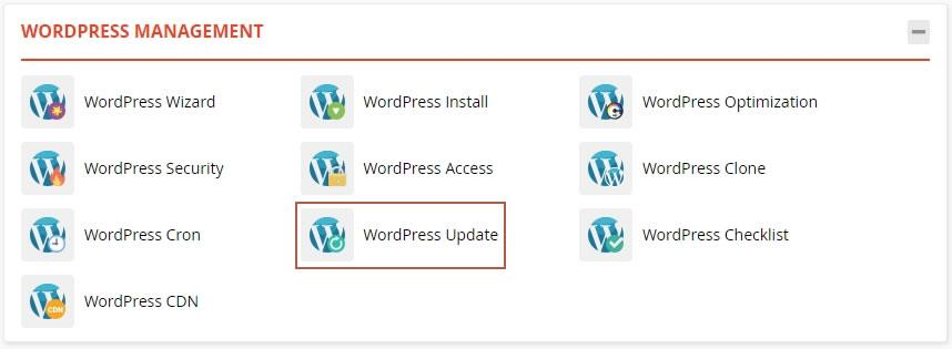 Access WordPress update in WordPress Management